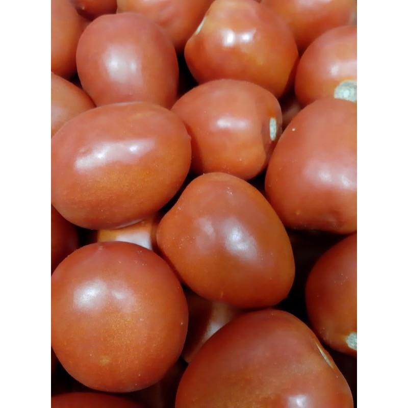 tomate-pera